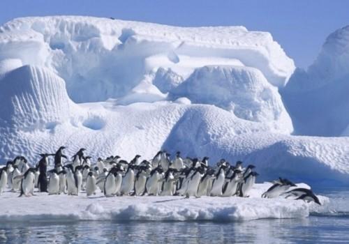 Se acelera el calentamiento del Polo Sur