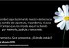 e8fceb8919df2522c829e1e2de364fab_XL Udigital - Portal de Noticias - UDigital | En red, estamos.